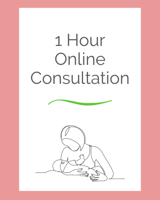 1 hour virtual consultation